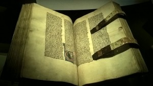 The Hamburg Bible, 1255. 700 pages of parchment, 89 illustration