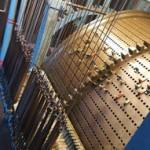 automatic-carillon