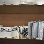 Artist's books: Xiao Fei Li, China; Hanne Matthiesen, Denmark.