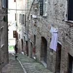 artists-book-exhibition-in-Urbino-02