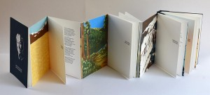 artists-book-triennial-Echeverria-4