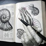 artists-book-exhibition-in-Australia-Janis-Nedela-2021